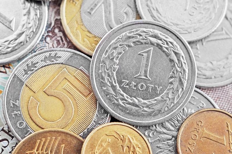 Polskie monety obiegowe - rewersy monet z nominałem 1 złotych i 5 złotych - GoldBroker.pl
